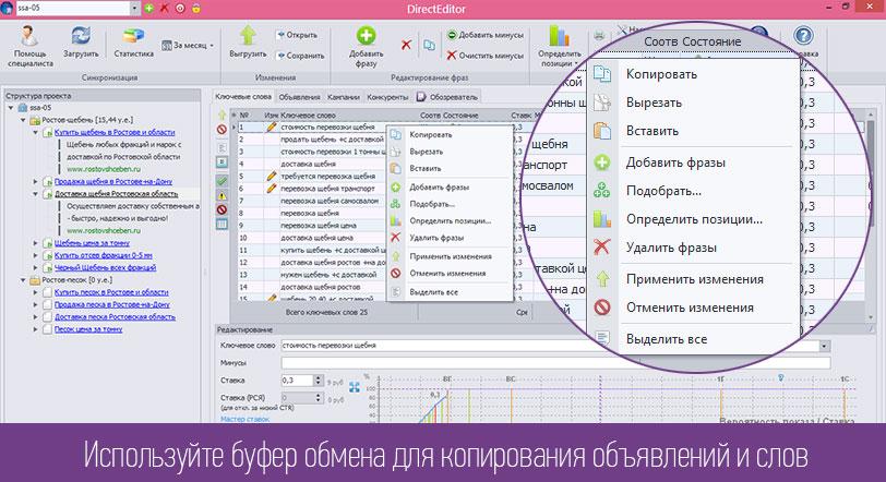 программа для работы с яндекс директ - фото 11